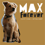 MAX forever